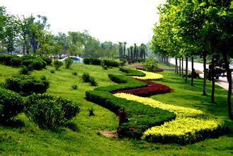 公园绿化养护