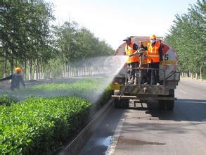 道路绿化养护