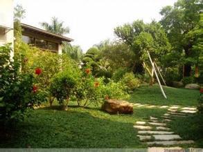 别墅区绿化养护